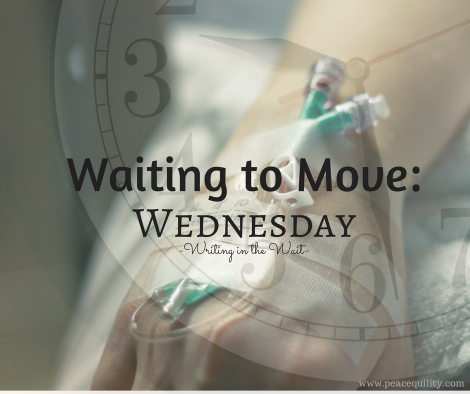 waiting-to-move-wednesday